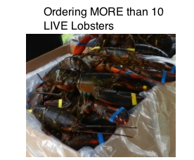 More Live Fresh Lobsters from St. Ann's Lobster Fest 2015