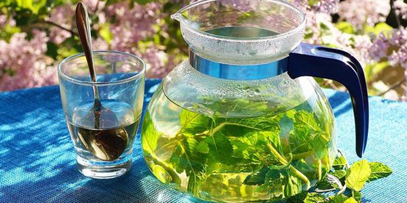 Benefits and Uses of Green Tea Products