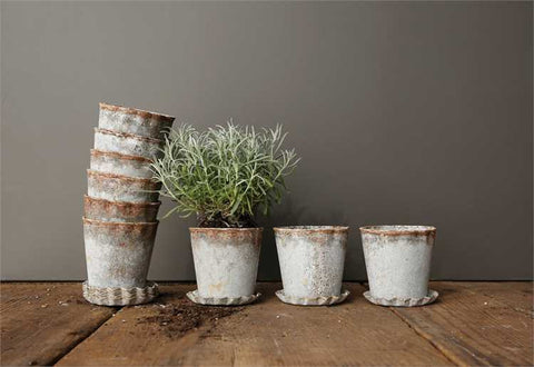 Distressed Flower Pot