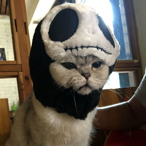 Jack Halloween Costume Hat For Pets