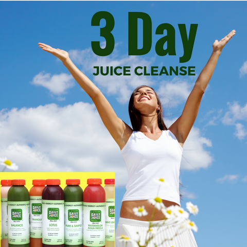 3 Day Cleanse - Beginner