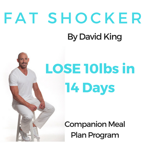 NEW YEAR SPECIAL - David King Fat Shocker 10lbs in 14 Days Companion Meal Plan