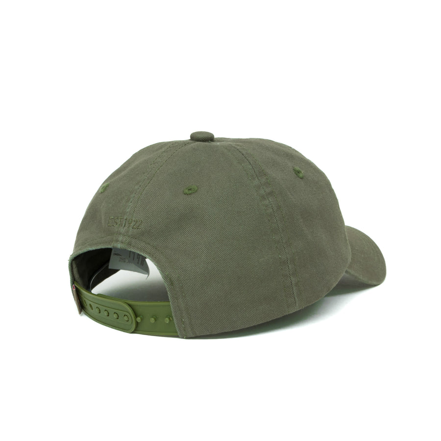 Dickies Hardwick 6 Panel Cap - Army Green