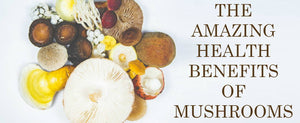 The Amazing Health Benefits Of Mushrooms
