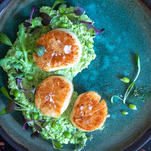 Cinder scallop recipe seared sous vide
