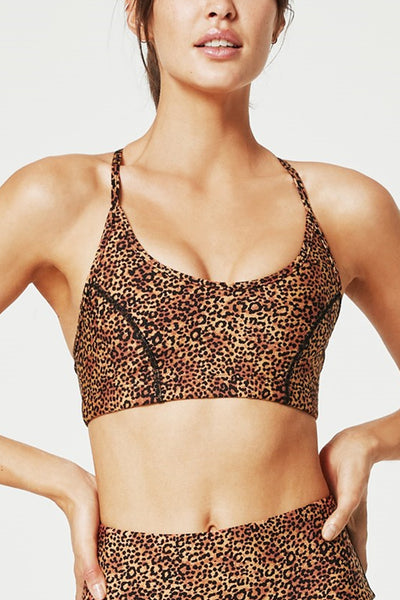 Dreamcatcher Canyon Push Up Sports Bra - Salma