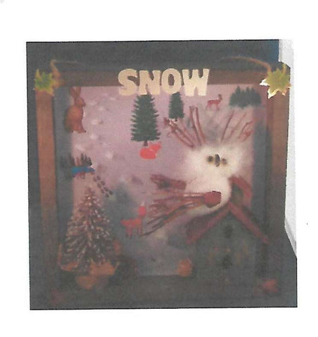 Shadowbox - Snow!