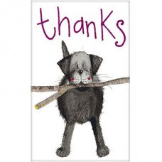 Thank You notelets. Black Labrador Retriever Dog. Pack of five. Coloured envelopes