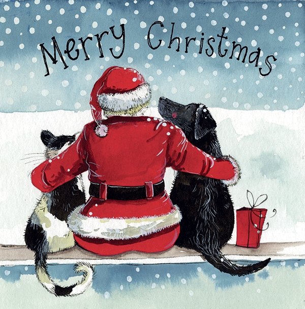 Christmas Card Pack  Santa & His Friends