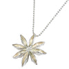 Star Anise Pod Necklace
