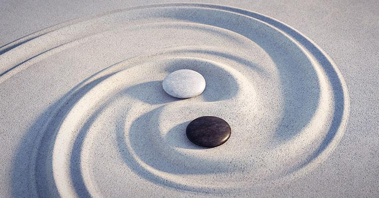 The Yin and Yang of Tai Chi
