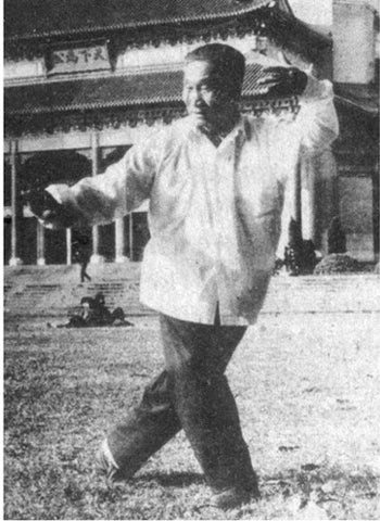 Fu Wing Fay Performing Tai Chi