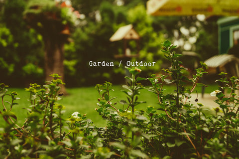 Garden and Outdoor