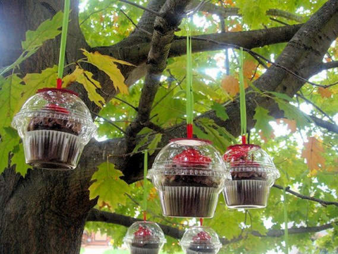 Tasty Christmas Ornaments | AGM Home Store