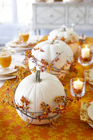 Decorate For Thanksgiving With Fall Colors | AGM Home Store