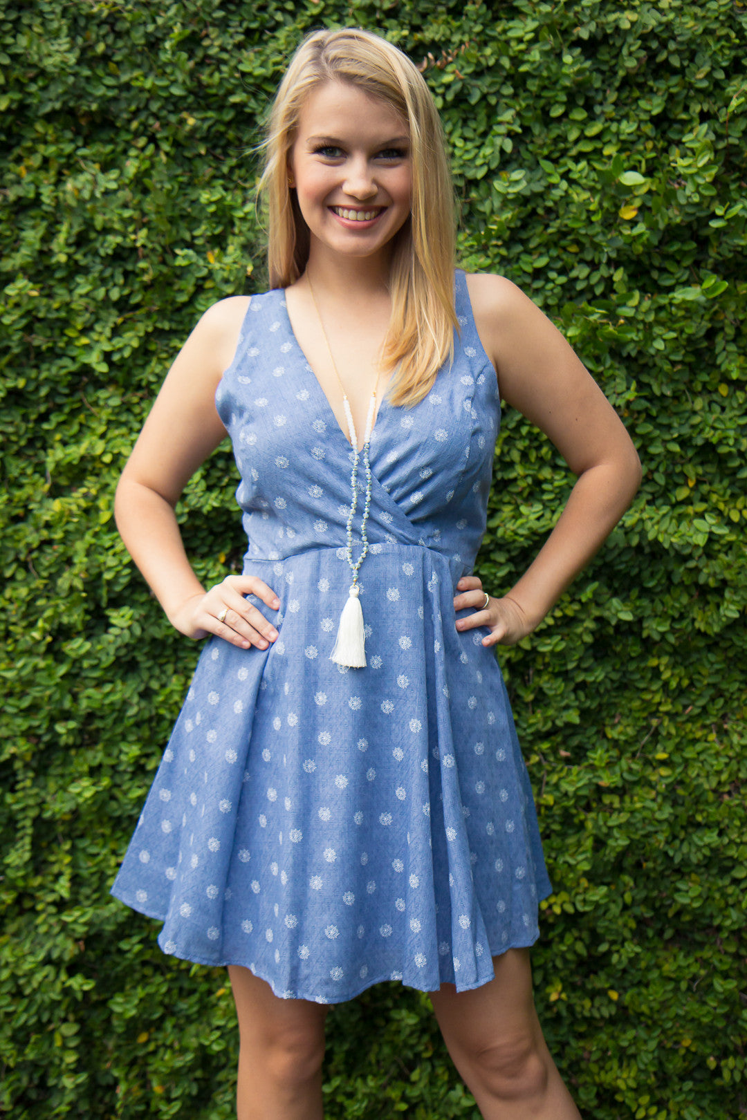 Shall We Chambray Dress