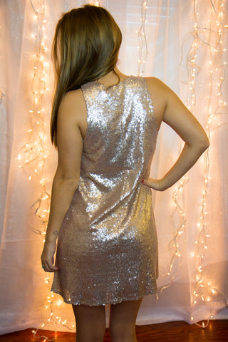 Shimmer & Shine Dress - Final Sale