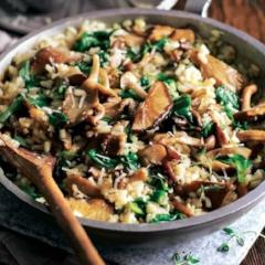Wild Mushroom and Spinach Risotto (V, GF)