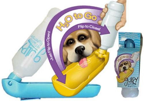 Gulpy Pet Water Dispenser 20 oz. Puppy's Home