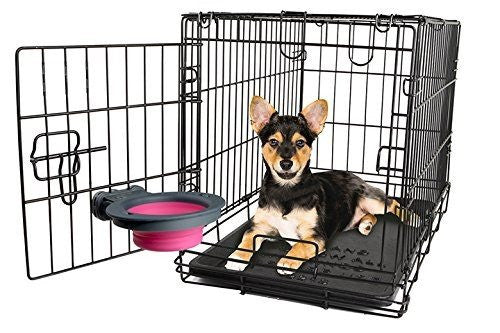 Green Collapsible Kennel Bowl Puppy's Home