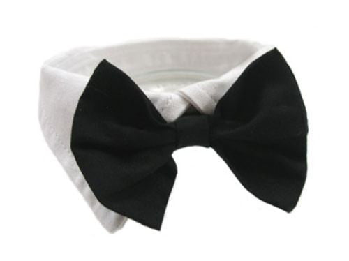 Black Formal Dog Bow Tie Puppy's Home