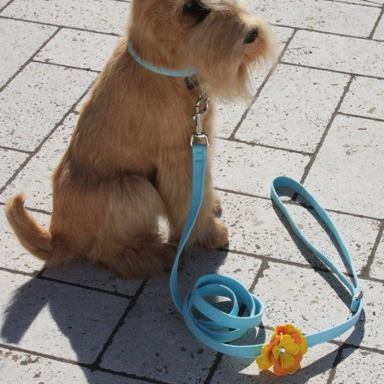 Darla Flowers Leash by Susan Lanci Puppy's Home