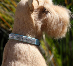 Giltmore Swarovski Crystal 4-Row Dog Collar by Susan Lanci Puppy's Home