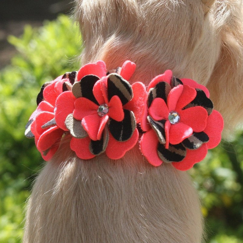 "Sarah Serengeti Flowers Dog Collar 1/2"" wide by Susan Lanci Puppy's Home"