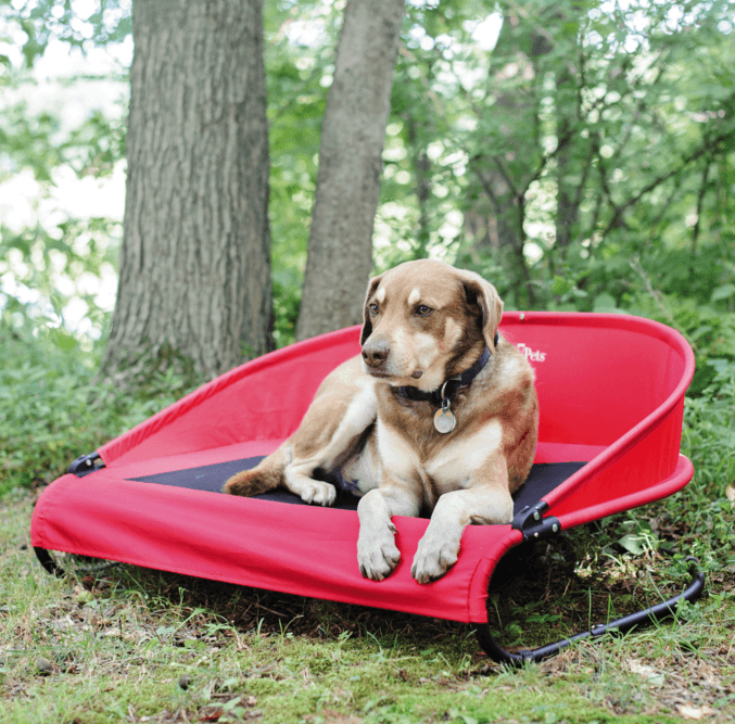 Cool-Air Cot for Dogs- Red Puppy's Home