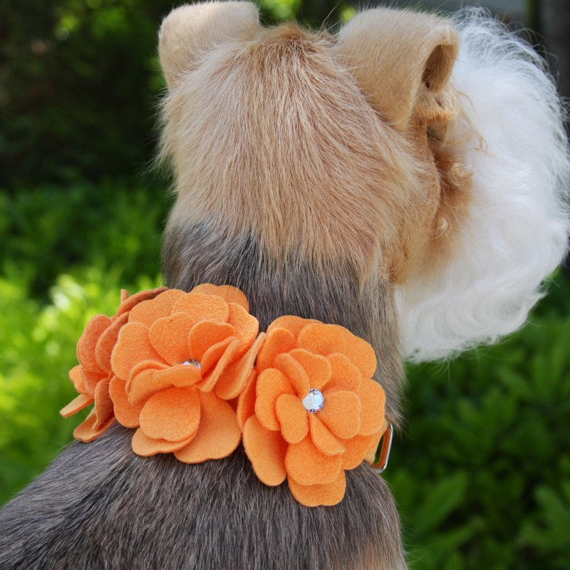 Tinkie's Garden Dog Collar by Susan Lanci Puppy's Home