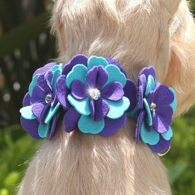 "Violet Flowers Dog Collar 1/2"" wide by Susan Lanci Puppy's Home"