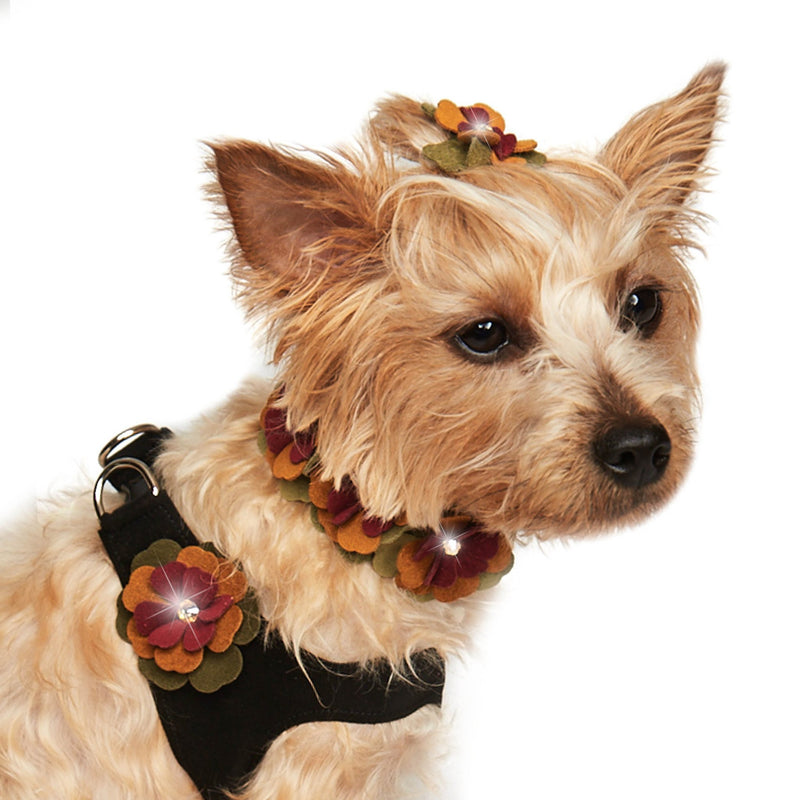 Autumn Flowers Ultrasuede Step-In Dog Harness by Susan Lanci Puppy's Home