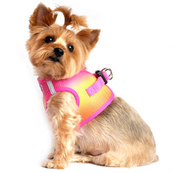American River Ombre Step-In Dog Harness - Raspberry Pink Orange Puppy's Home