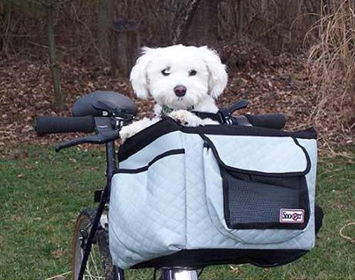 Buddy Dog Bike Basket Puppy's Home