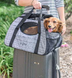Carry-Me™ Pet Carrier Puppy's Home