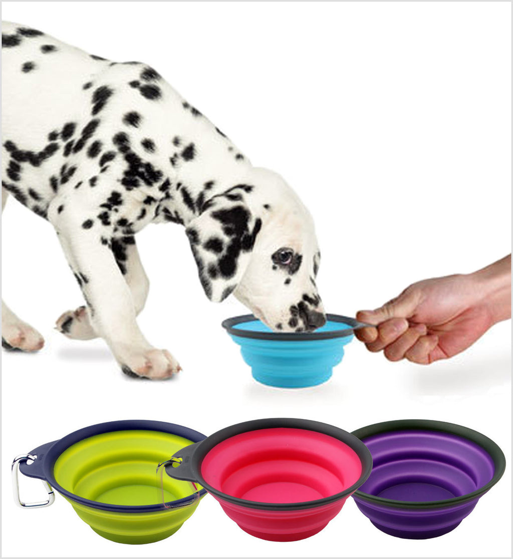Travel Cup Popware for Pets™ Dexas®