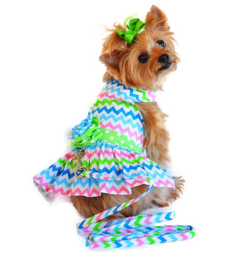Colorful Wave Designer Dog Dress with Leash Puppy's Home