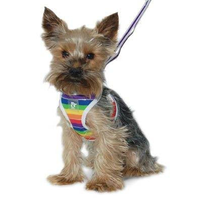 EasyGO Rainbow Dog Harness with Leash Puppy's Home
