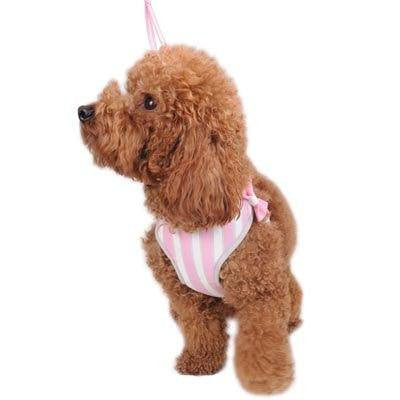 EasyGO Sweetbow Dog Harness with Leash Puppy's Home