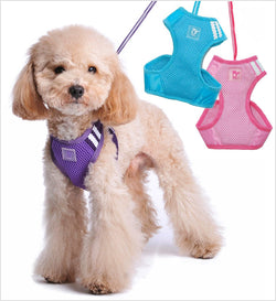 EasyGO Basic Dog Harness with Leash Puppy's Home