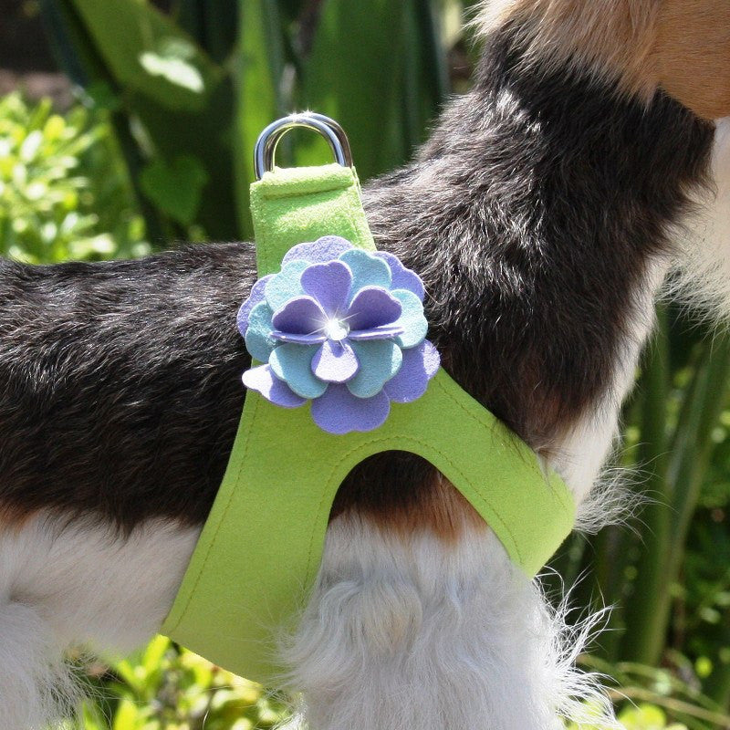 Emma Flowers Swarovski Crystal Step-In Dog Harness by Susan Lanci Puppy's Home