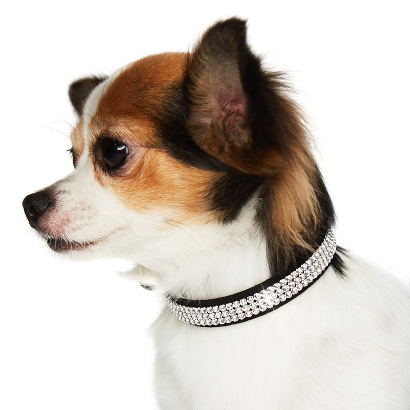 Giltmore Swarovski Crystal 3-Row Dog Collar by Susan Lanci Puppy's Home