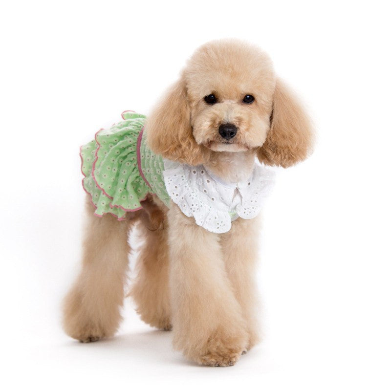 Little Flower Dog Dress Puppy's Home
