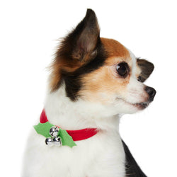 "Jingle Bells Dog Collar 1/2"" by Susan Lanci Puppy's Home"