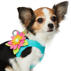 Island Flower Ultrasuede Step-In Dog Harness by Susan Lanci Puppy's Home