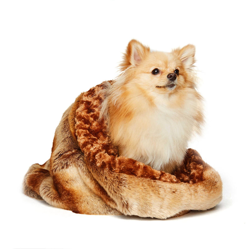 Golden Chinchilla Curley Sue Dog Cuddle Cup by Susan Lanci Puppy's Home