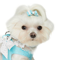 Tiffi's Gift Dog Hair Bow by Susan Lanci Puppy's Home