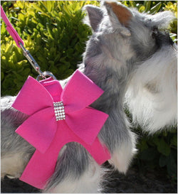 Nouveau Bow Step-In Dog Harness by Susan Lanci Puppy's Home