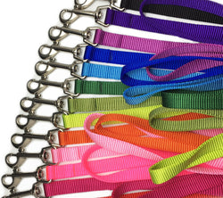 "Nylon Dog Leash- 5/8"" width Puppy's Home"