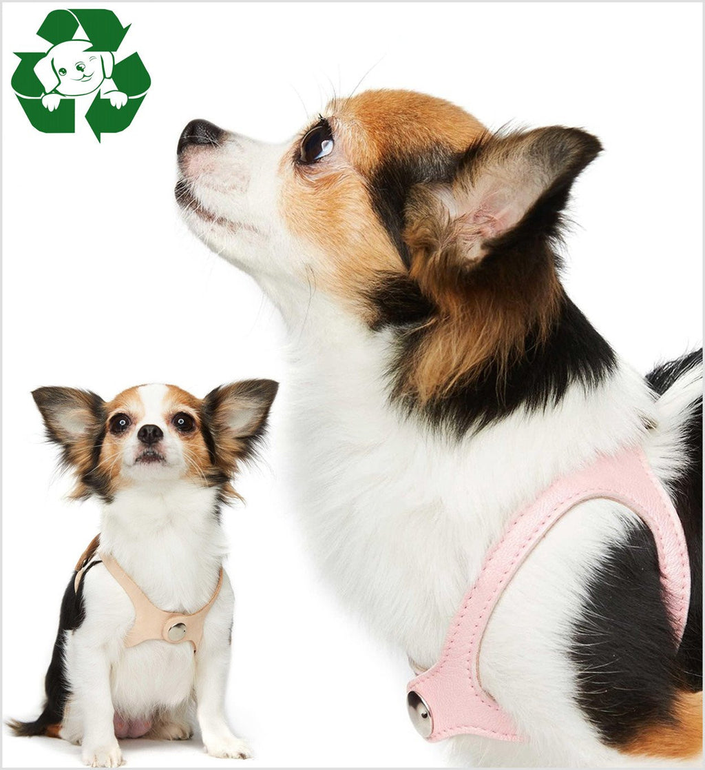 Butter Soft Leather No Choke Step-In Dog Harness by Scrappy Pet Puppy's Home